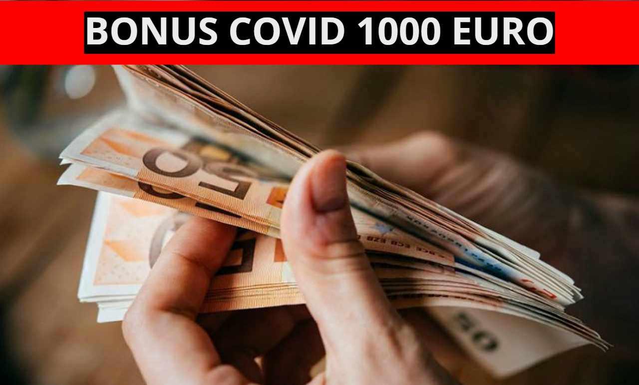decreto-1000e