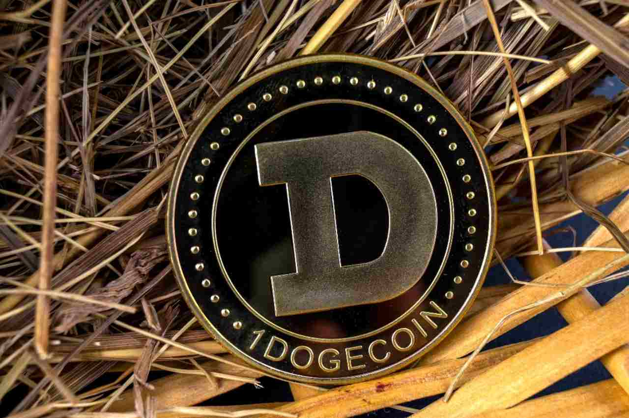 Dogecoin criptovalute