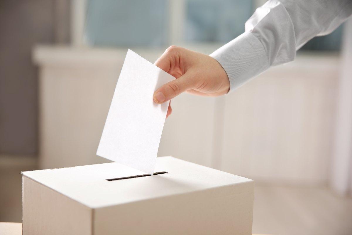 Elezioni Green Pass