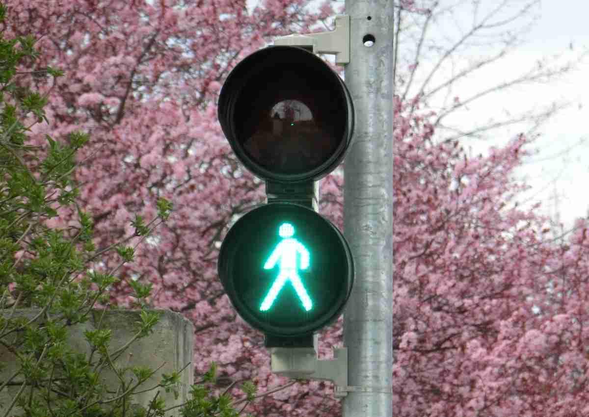 stop green pass da quando